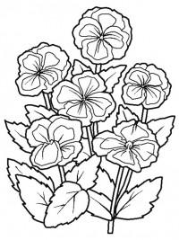 Kleurplaten Bloemen Vlinders Hartjes.Kleurplaten Bloemen Topkleurplaat Nl