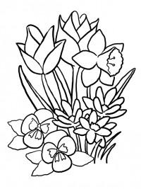 Kleurplaten Bloemen En Planten.Kleurplaten Lente Topkleurplaat Nl