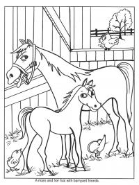 Kleurplaten Paarden Met Veulens.30 Kleurplaten Paarden Tip Gratis Te Printen Topkleurplaat Nl
