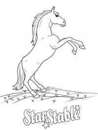 Kleurplaten Dieren Paard.30 Kleurplaten Paarden Tip Gratis Te Printen Topkleurplaat Nl