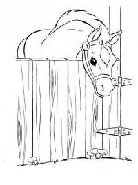 Kleurplaten Dieren Paard.30 Kleurplaten Paarden Tip Gratis Te Printen