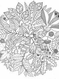 Kleurplaten Winter Mandala.25 Mandala Kleurplaten Gratis Te Printen Topkleurplaat Nl