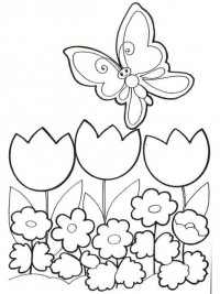 Kleurplaten Vlinders Voor Volwassenen.Kleurplaten Vlinders Topkleurplaat Nl