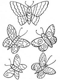 Vlinders Kleurplaten Printen.Kleurplaten Vlinders Topkleurplaat Nl