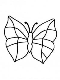 Kleurplaten Vlinders Topkleurplaat Nl