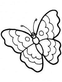 Kleurplaten Kleine Vlinders.Kleurplaten Vlinders Topkleurplaat Nl
