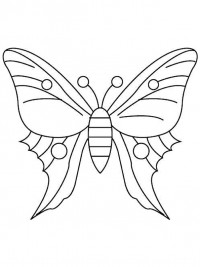 Vlinder Kleurplaten Voor Volwassenen.Kleurplaten Vlinders Topkleurplaat Nl