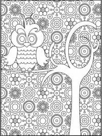 Kleurplaten Voor Volwassenen Tips.Kleurplaten Volwassenen Voorjaar Flamingo Kleurplaten Voor