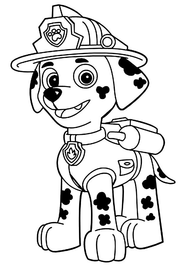 paw-patrol13