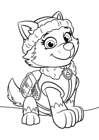 paw-patrol16