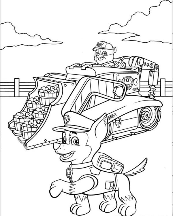 paw-patrol21