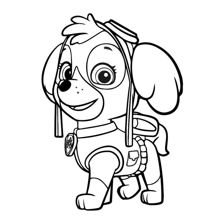 paw-patrol23