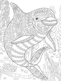 Kleurplaten Van Dolfijnen Mandala.20 Gratis Te Printen Dolfijn Kleurplaten Topkleurplaat Nl