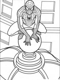 Kleurplaten Van Spiderman.Spiderman Kleurplaten Topkleurplaat Nl