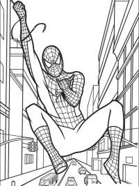 Kleurplaten Printen Konijn Spiderman Kleurplaten Topkleurplaat Nl