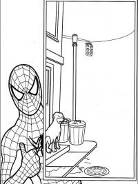 Kleurplaten Printen Spiderman.Spiderman Kleurplaten Topkleurplaat Nl
