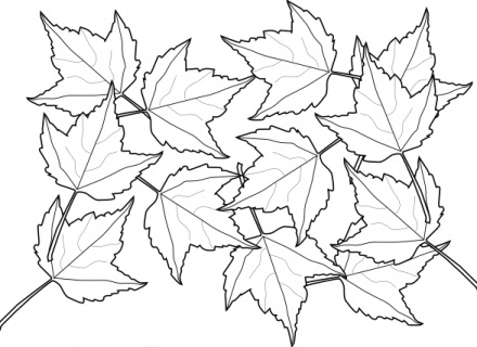 herfst-kleurplaten-17