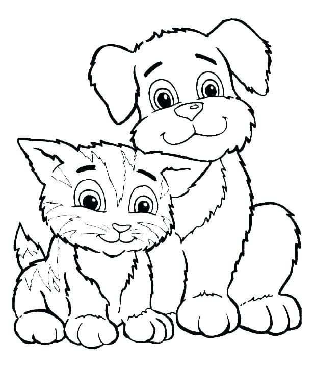 hond20