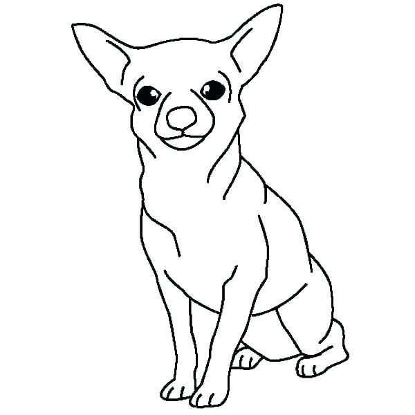hond21