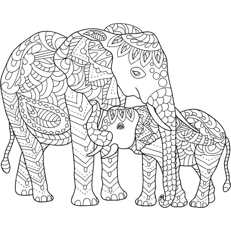kleurplaat olifant 13 topkleurplaat nl