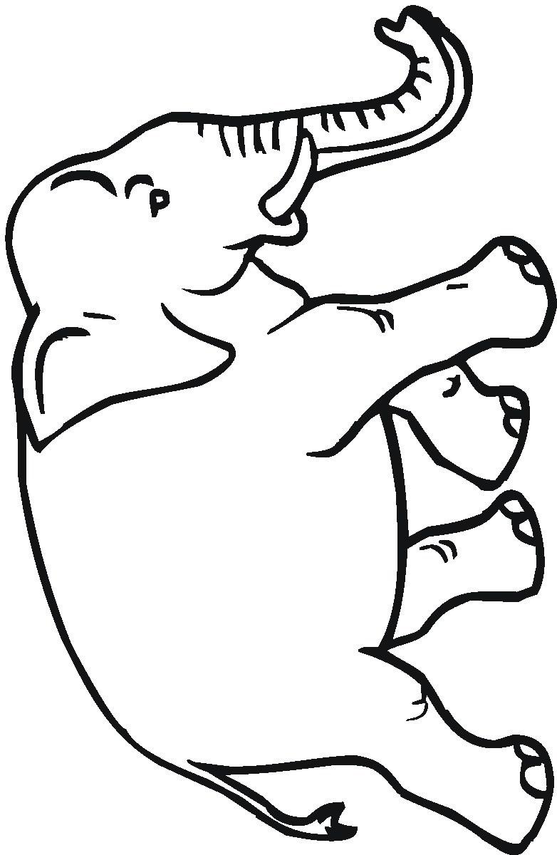 kleurplaat olifant 15 topkleurplaat nl