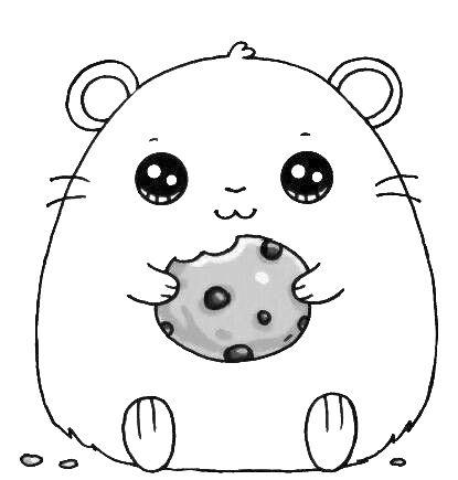 Schattige hamster