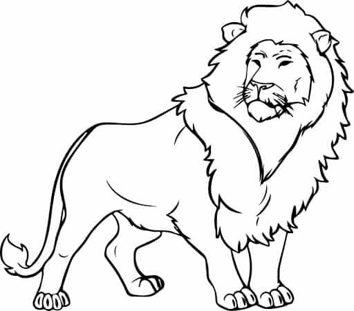 kleurplaat-leeuw-10